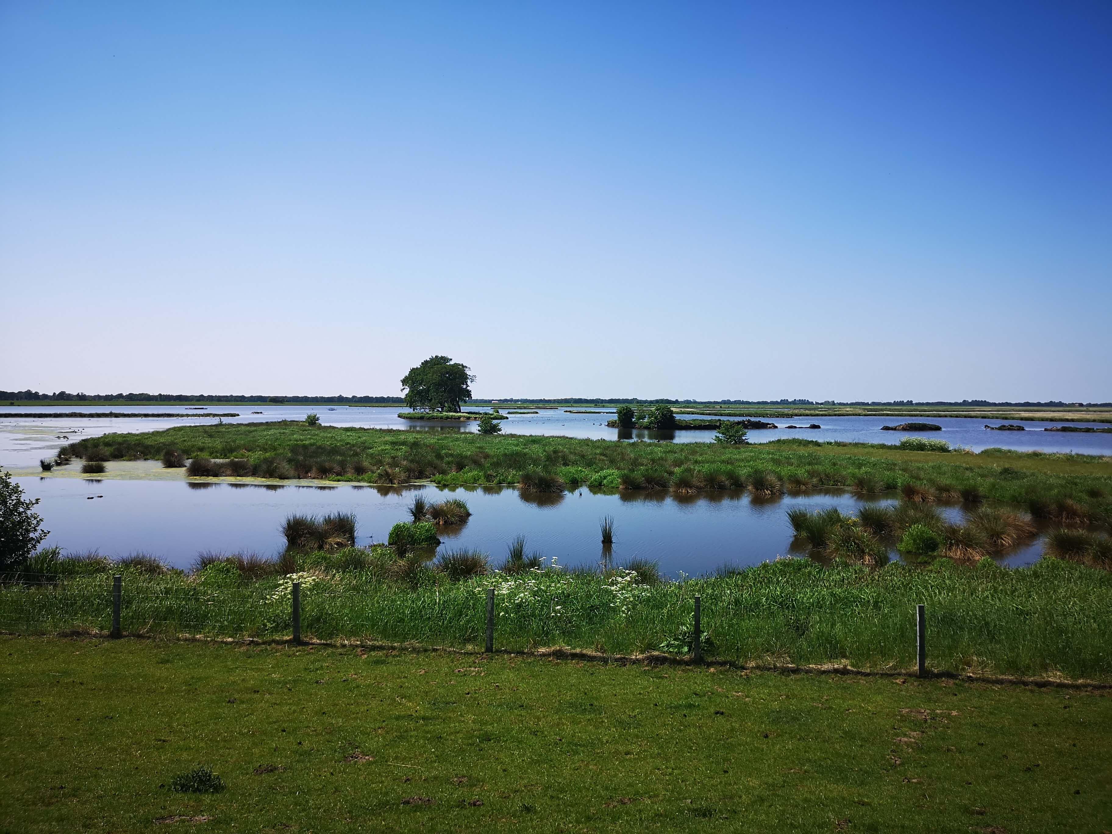 Naturschutzgebiet Holter Hamrich